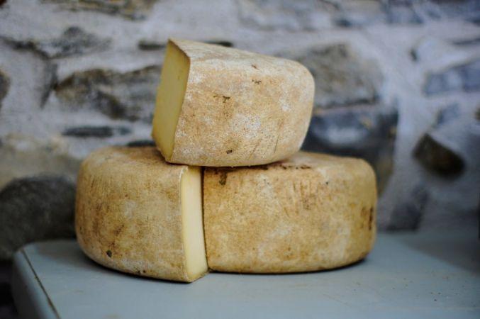Gerçek olmayan peyniri piyasaya sürdüler! Halkın bu konuda dikkatli olması gerekiyor