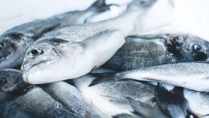 Esnaf balık fiyatlarının düşeceği günü bekliyor