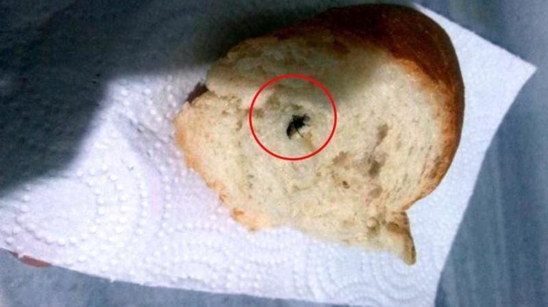 Mide bulandıran görüntü! Aldığı ekmeğin içinden sinek çıktı!
