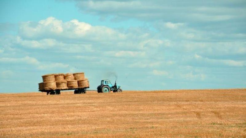 Tarım sektörüne yatırım yapmak isteyenlere destek sağlanıyor, işte başvuru detayları