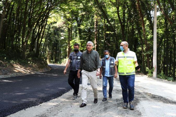 İl Ormanı, Yeni Bir Kimliğe Kavuştu