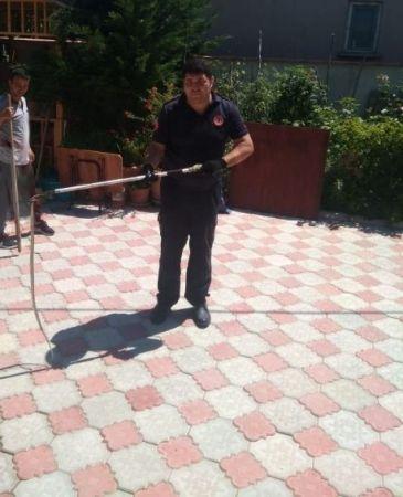 Yemek yapmak için girdiği mutfakta 1 metrelik yılanla karşılaştı