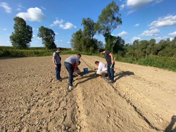 Ferizli'de ilk salepler toprakla buluşturuldu