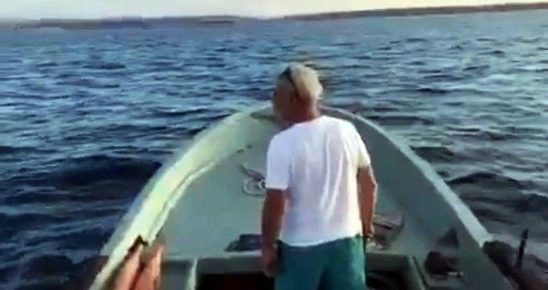 Yunuslar tekneyle yarıştı