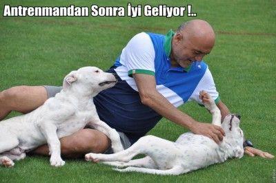 Karaman'ın Köpek Sevgisi...