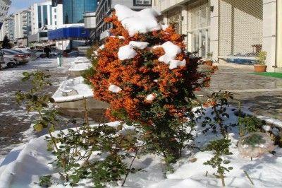 Gaziantep'te Kar Yağışı Yeniden Başladı.Okulların Durumu Ne?