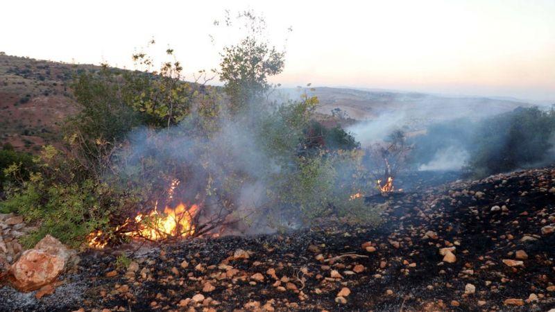 Son Dakika...Gaziantep'te Orman Yangını